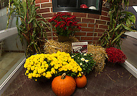 CBH Landscape Contractors donated fall displays at the entrances of Laconia High School to welcome visitors during Homecoming festivities.   (Karen Bobotas/for the Laconia Daily Sun)