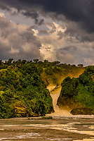 Murchison Falls, also known as Kabalega Falls, is a waterfall between Lake Kyoga and Lake Albert on the Victoria Nile in Uganda. At the top of Murchison Falls, the Nile forces its way through a gap in the rocks, only 7 m (23 ft) wide, and tumbles 43 m (141 ft), before flowing westward into Lake Albert. The outlet of Lake Victoria sends around 300 cubic meters per second (11,000 ft³/s) of water over the falls, squeezed into a gorge less than 10 m (33 ft) wide.