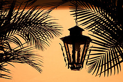 North America, Mexico, Oaxaca Province, Oaxaca, wrought-iron lantern and palm fronds (silhouette)