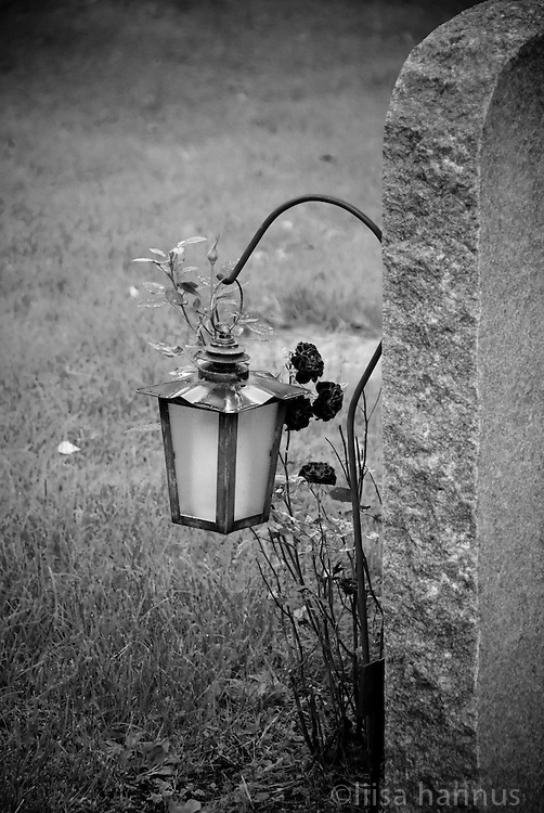 Following the European custom of decorating grave sites, roses grown around a lantern that has been placed in front of a grave stone at Skogskyrkogården, or the Woodland Cemetery, in south Stockholm, Sweden. The cemetery was designed by Gunnar Asplund and Sigurd Lewertz g opened in 1920. The architects' use of the natural landscape has had a profound effect on cemetery design throughout the world, and in 1994 Skogskyrkogården was named a UNESCO World Heritage Site.