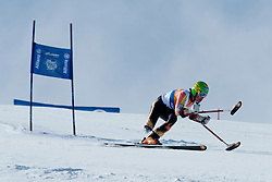 LUSCOMBE Braydon, CAN, Super G, 2013 IPC Alpine Skiing World Championships, La Molina, Spain