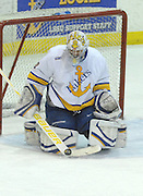 Lake Superior State goaltender Pat Inglis makes a stick save against Notre Dame during Friday nights game in Sault Ste. Marie.