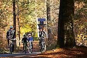 Bij Austerlitz fietsen twee mountainbikers met kinderen door het bos op een mooie herfstdag.<br /> <br /> Near Austerlitz two mountain bikers cycle with two children in the woods on a nice autumn day.