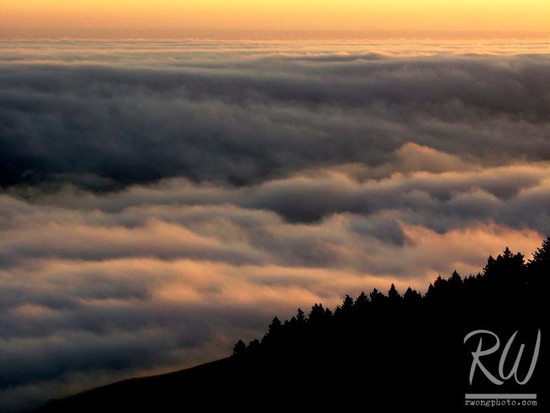 Foggy Sunset, Mount Tamalpais State Park, California
