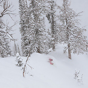 Kim Havell hits deep blower powder during a monsterous storm cycle at Jackson Hole Mountain Resort in Teton Village, Wyoming.