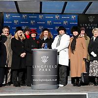 Lingfield 3rd February
