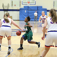 Women's Basketball: Concordia University (Wisconsin) Falcons vs. Wisconsin Lutheran College Warriors