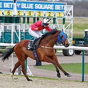 Precision Strike and Philip Prince winning the 2.10 race