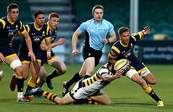 Michael Dowsett of Worcester Cavaliers is tackled - Mandatory by-line: Robbie Stephenson/JMP - 03/04/2017 - RUGBY - Sixways Stadium - Worcester, England - Worcester Cavaliers v Wasps A - Aviva A League