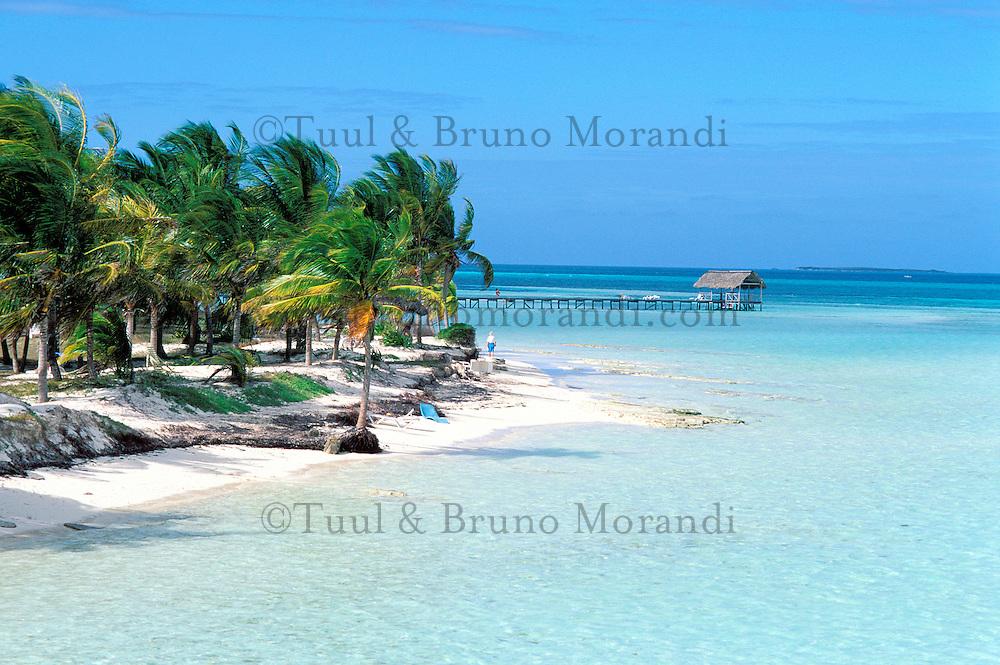 Cuba,  Province de Sancti Spiritus, Cayo Coco, plage de Cayo Guillermo // Cuba, Sancti Spiritus Province, Cayo Coco, Cayo Guillermo beach