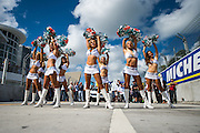 March 14, 2015 - FIA Formula E Miami EPrix: Miami Dolphin cheerleaders