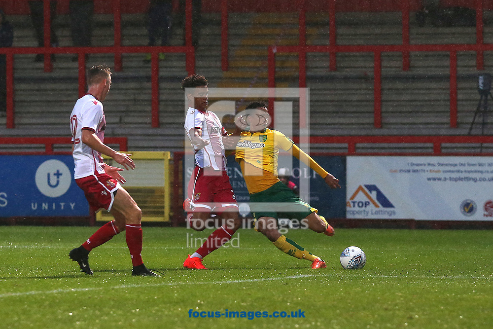 Jamal Lewis of Norwich in action during the Pre-season Friendly match at the Lamex Stadium, Stevenage<br /> Picture by Paul Chesterton/Focus Images Ltd +44 7904 640267<br /> 11/07/2017