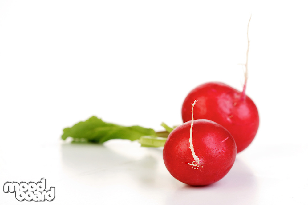 Close-up of radish on white background