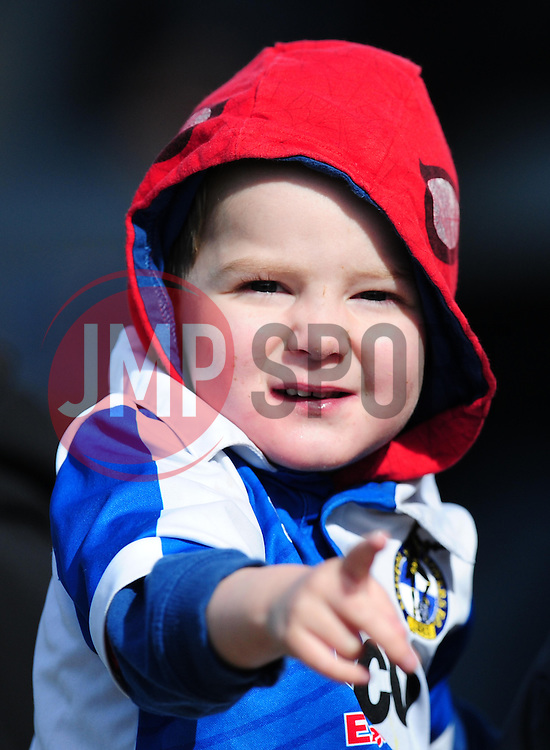 Bristol Rover's Fans watch on. - Photo mandatory by-line: Alex James/JMP - Mobile: 07966 386802 - 31/03/2015 - SPORT - Football - Bristol - Memorial Stadium - Vanarama Football Conference - Bristol Rovers Open Training Session