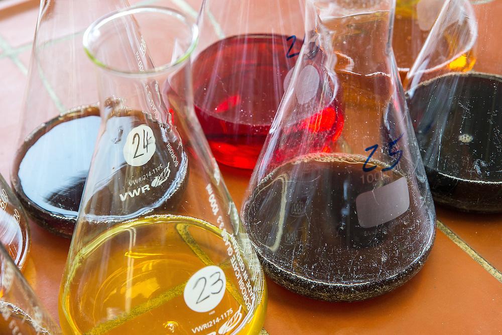 """Germany - Deutschland - Klosterbrauerei Neuzelle; Deutsches Reinheitsgebot; Deutsches BIER; Dunkelbier """"Schwarzer Abt""""; Bier-Kriege; Amtsposse; BEER WAR; GERMAN BEER; Purity law; Monastery Brewery Neuzelle; Beer Production; Helmut Fritsche; Senior Chief, 78 y.; Stefan Fritsche, Junior Chief, 49 y.; HERE: Research Lab for new beers; Neuzelle, 21.03.2016; © Christian Jungeblodt"""