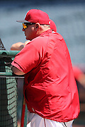 ANAHEIM, CA - APRIL 30:  Mike Scioscia #14 of the Los Angeles Angels of Anaheim watches batting practice before the game against the Cleveland Indians at Angel Stadium on Wednesday, April 30, 2014 in Anaheim, California. The Angels won the game 7-1. (Photo by Paul Spinelli/MLB Photos via Getty Images) *** Local Caption *** Mike Scioscia