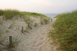 A path through the dunes at Head of the Meadow Beach on the Cape Cod National Seashore in Truro, Massachusetts.