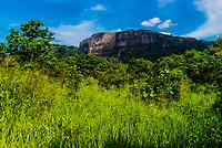 Hurulu Eco Park, Habarana, North Central Province, Sri Lanka.