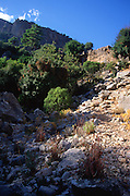 Distant rock tombs in cliff face, Lycian city of Pinara, Turkey