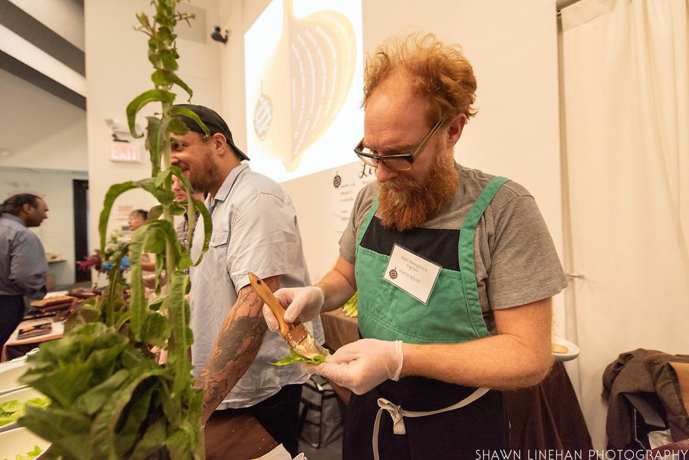 LETTUCE, Lactuca sativa<br /> Showcase: Mini-lettuce varieties<br /> Project: Kitchen Cultivars<br /> Project Coordinators: Glynwood and Seedshed<br /> Farmer: Larry Tse, Dig Inn<br /> Chef:  Matt Weingarten, Dig Inn