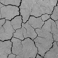 Cracked Earth in the Utah desert