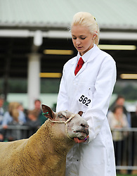 © Licensed to London News Pictures. <br /> 08/07/2014. <br /> <br /> Harrogate, United Kingdom<br /> <br /> Today saw the first day of the Great Yorkshire Show. The show is England's Premier Agricultural Event and is based on the 250-acre Great Yorkshire Showground near Harrogate. The Main Ring is the hub of the Show providing a setting for international show jumping and world class cattle parade. The showground is filled with animals, country demonstrations, have-a-go activities and rural crafts.<br /> <br /> Photo credit : Ian Forsyth/LNP