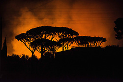 August 17, 2017 - Terracina, Italy - A forest fire in Terracina, Italy, on August 16, 2017. (Credit Image: © Roberto Silvino/NurPhoto via ZUMA Press)