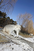 China, Beijing, Ming Dynasty Tombs, Changling Tomb, statues of elephants lining the sacred way