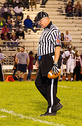26 September 2014: Danville Vikings v Normal Community West Wildcats Football in Normal Illinois