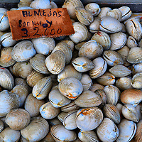 Machas Clams Displayed at Fish Market in Puerto Montt, Chile<br /> Saltwater clams can be found on both the Atlantic and Pacific coasts of South America.  Many people consider the best are these Chilean machas clams displayed at an outdoor fish market in Puerto Montt. The almejas are a wonderful main ingredient for Chilean cuisine.  They are harvested by &ldquo;hookah&rdquo; divers who use breathing lines to reach the clam beds.  Southern Chile also has a freshwater species of clams found in rivers called diplodon chilensis.