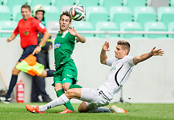 Boban Jovic #5 of Olimpija vs Gregor Zugelj of Krka during football match between NK Olimpija and NK Krka in Round 1 of Prva liga Telekom Slovenije 2014/15, on July 19, 2014 in SRC Stozice, Ljubljana, Slovenia. Photo by Vid Ponikvar / Sportida.com