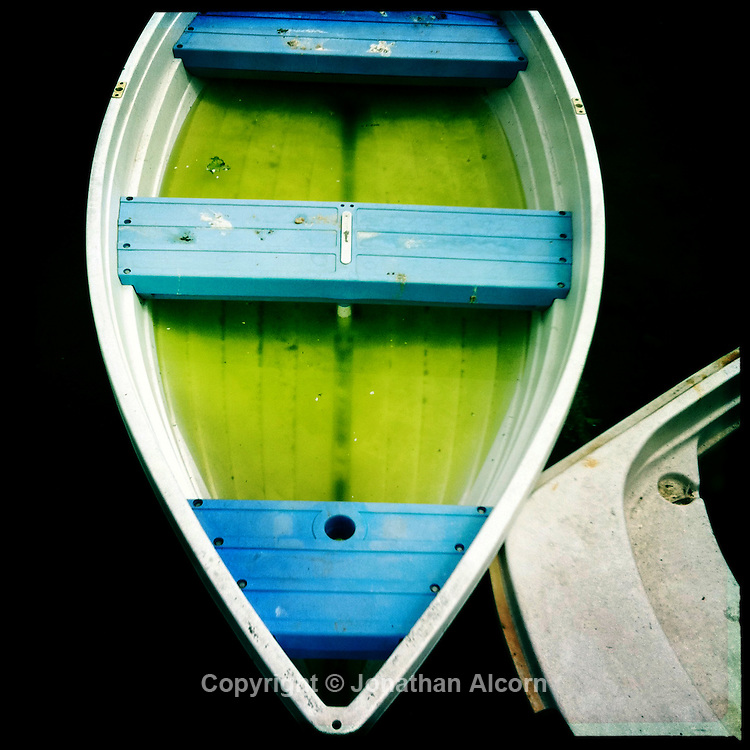 A rowboat in the Venice Canals with gathered rain water turning a shade of green