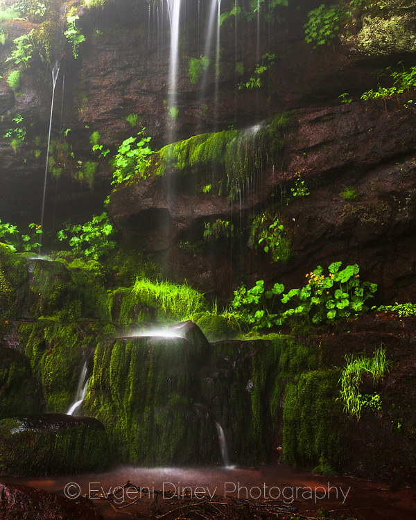 Green wall ofwaterfall coveded with moss