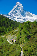 Hikers on walking trail below the Matterhorn mountain in the Swiss Alps near Zermatt, Switzerland