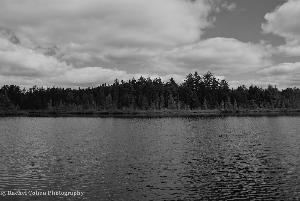 &quot;Solitude&quot; B&amp;W<br /> <br /> Enjoy this quiet and calming image in black and white of a lake, forest, and cloud filled sky in rural Michigan's Upper Peninsula!!<br /> <br /> Black and White images by Rachel Cohen