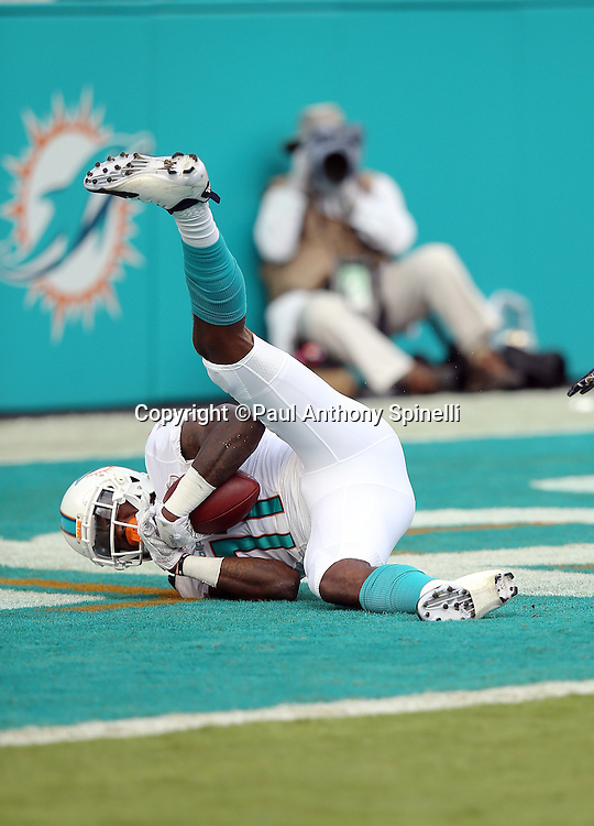 Miami Dolphins wide receiver DeVante Parker (11) comes down with the ball as he catches a second quarter touchdown pass for a 7-0 Dolphins lead during the 2015 week 13 regular season NFL football game against the Baltimore Ravens on Sunday, Dec. 6, 2015 in Miami Gardens, Fla. The Dolphins won the game 15-13. (©Paul Anthony Spinelli)