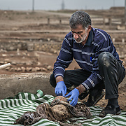Digging up the dead in Mosul