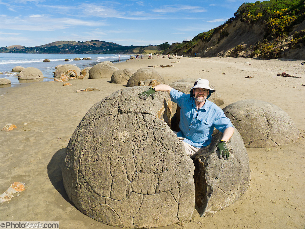 South Pacific Ocean waves released the spherical Moeraki Boulders onto Koekohe Beach, between Moeraki and Hampden on the Otago coast, South Island, New Zealand. These ancient concretions grew 2 meters (6 feet) in diameter over 4 to 5.5 million years from marine mud (Moeraki Formation mudstone) near the surface of the Paleocene sea floor.  After the concretions formed, large cracks (septaria) formed and filled with brown calcite, yellow calcite, and small amounts of dolomite and quartz when a drop in sea level allowed fresh groundwater to flow through the enclosing mudstone. For licensing options, please inquire.