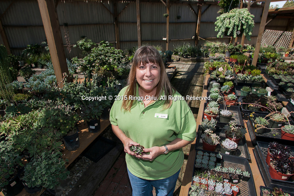 Ellyn Meikle, owner of Water Wise Garden Center in Torrance. (Photo by Ringo Chiu/PHOTOFORMULA.com)