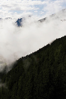 IFTE-NB-007643; Niall Benvie; panorama element; View into the valley around Fliess from Kaunergrat visitor's centre; Austria; Europe; Tirol; vertical; grey blue; forest woodland; 2008; July; summer; fog mist rain cloud; Wild Wonders of Europe Naturpark Kaunergrat
