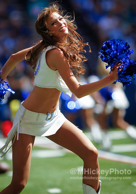 INDIANAPOLIS, IN - SEPTEMBER 15: An Indianapolis Colts cheerleader performs during the game against the Miami Dolphins at Lucas Oil Stadium on September 15, 2013 in Indianapolis, Indiana. Miami defeated Indianapolis 24-20. (Photo by Michael Hickey/Getty Images)