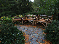 A rustic bench at the Shakepeare Garden in Central Park