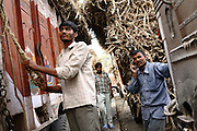 A truck driver and his co-workers are waiting to deliver their load of sugarcane inside the Daurala Sugar Works industrial complex, near Daurala village, Meerut District, Uttar Pradesh, India, on Monday, Apr. 14, 2008. Sugarcane-related manufactories, like sugar mills and distilleries rank between the 17 most polluting industries by the Indian Ministry of Environment and Forests and special conditions apply to the release of their wastewaters back into the environment. If Daurala Sugar Works, whose drain reaches the Kali river (East), have implemented a fairly efficient Effluent Treatment Plant, many in the sugarcane-rich area have not, and keep releasing contaminated water into nearby rivers. Even if levels of pollutants are believed to be largely reduced at the Complex, the Kali river (East) cannot absorb any more amount of wastewaters and its situation remains critically unhealthy... ..