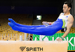 Alen Dimic of Slovenia competes during Qualifications day of Artistic Gymnastics World Cup Ljubljana, on April 26, 2013, in Hala Tivoli, Ljubljana, Slovenia. (Photo By Vid Ponikvar / Sportida.com)