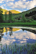A pond in the Platte River Wilderness, Wyoming reflects morning clouds on its glassy surface.
