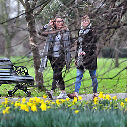 © Licensed to London News Pictures. 04/03/2017<br />  A bright spring day at Greenwich Park,Greenwich,London.<br /> Photo credit :Grant Falvey/LNP