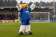Haydon the Womble pointing fingers into the air during the EFL Sky Bet League 1 match between AFC Wimbledon and Southend United at the Cherry Red Records Stadium, Kingston, England on 1 January 2020.
