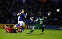 Photo: Steve Bond/Richard Lane Photography. Leicester City v West Bromwich Albion. Coca Cola Championship. 07/11/2009. Matty Fryatt effort goes wide