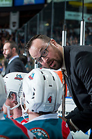KELOWNA, CANADA - APRIL 14: Kelowna Rockets' assistant coach Kris Mallette stands on the bench against the Portland Winterhawks on April 14, 2017 at Prospera Place in Kelowna, British Columbia, Canada.  (Photo by Marissa Baecker/Shoot the Breeze)  *** Local Caption ***