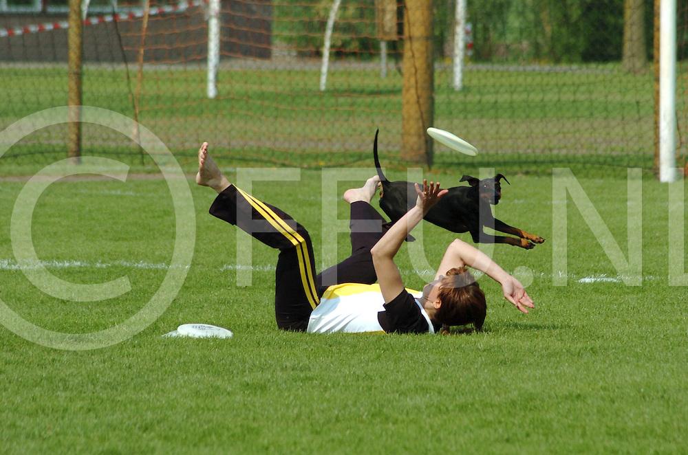 060507,beerzeveld,nederland,<br /> frisbeewedstrijden voor honden, fotografiefrankuijlenbroek&copy;2006sanderuijlenbroek